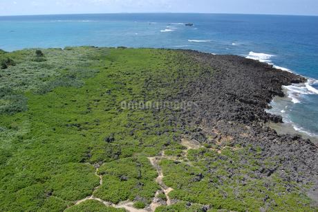 青い海と緑の岬の広場の写真素材 [FYI02982929]