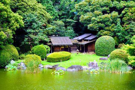 東京国立博物館の和風庭園の写真素材 [FYI02983146]