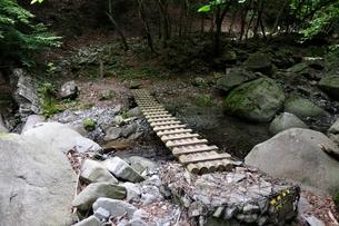 東海自然歩道 渓流の橋の写真素材 [FYI02983219]