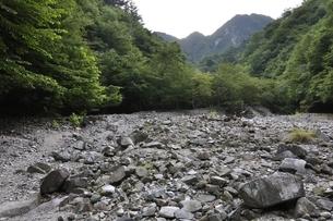 西丹沢 用木沢より大笄と小笄の写真素材 [FYI02983221]