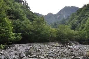 西丹沢 用木沢より大笄と小笄の写真素材 [FYI02983222]