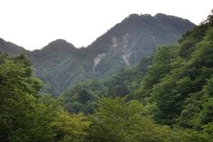 西丹沢 用木沢より大笄と小笄の写真素材 [FYI02983223]