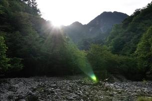 朝陽射し込む用木沢の河原の写真素材 [FYI02983228]