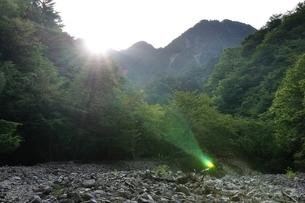 朝陽射し込む用木沢の河原の写真素材 [FYI02983229]