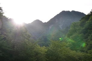 朝陽射し込む用木沢の河原の写真素材 [FYI02983230]