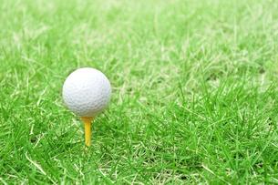 芝生の上のゴルフボールの写真素材 [FYI02983236]