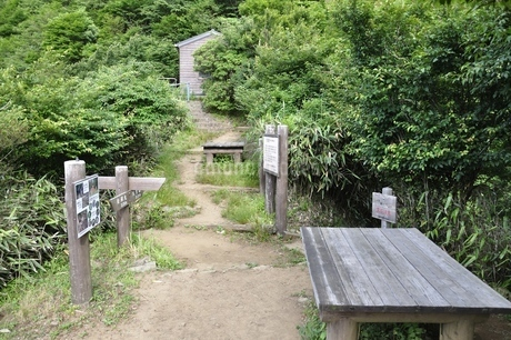 西丹沢 犬越路の写真素材 [FYI02983237]