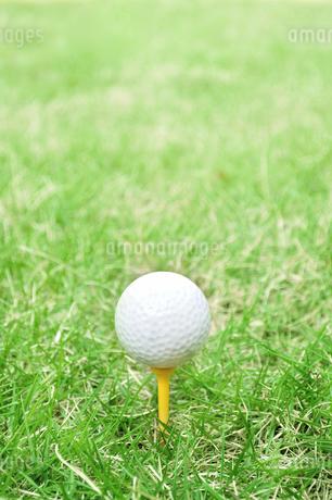 芝生の上のゴルフボールの写真素材 [FYI02983238]