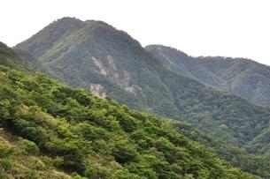 犬越路からの大笄と檜洞丸の山並みの写真素材 [FYI02983241]