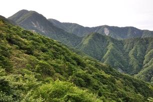 犬越路からの大笄と檜洞丸の山並みの写真素材 [FYI02983244]