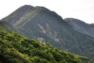 犬越路からの大笄と檜洞丸の山並みの写真素材 [FYI02983246]