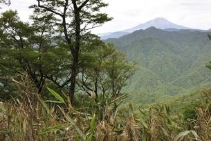 大室山からの富士山の写真素材 [FYI02983258]