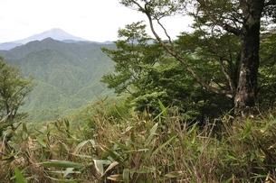 大室山からの富士山の写真素材 [FYI02983259]
