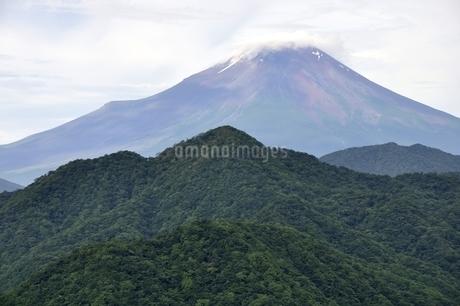 大室山からの富士山の写真素材 [FYI02983263]