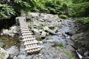 東海自然歩道 西丹沢の木道の写真素材 [FYI02983563]