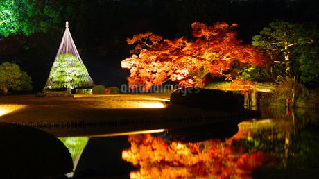 六義園の紅葉の写真素材 [FYI02983573]