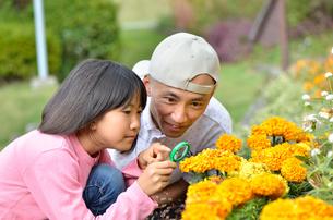 虫メガネで花を観察する親子の写真素材 [FYI02983951]