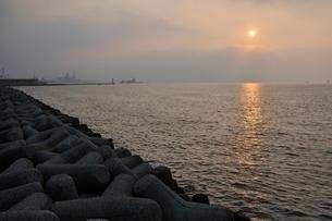 東京湾の朝日の写真素材 [FYI02984075]