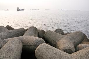 東京湾 朝の煌めきの写真素材 [FYI02984076]