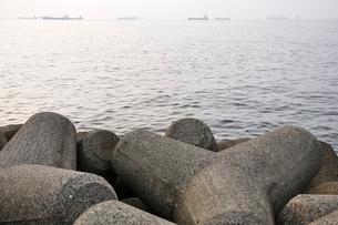 東京湾 朝の煌めきの写真素材 [FYI02984077]