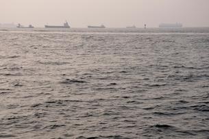 東京湾 朝の煌めきの写真素材 [FYI02984079]