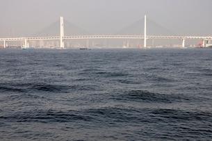 横浜港の横浜ベイブリッジの写真素材 [FYI02984090]