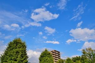 青空の下のみどりと建物の写真素材 [FYI02984130]