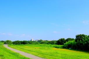 青空の下のみどりの草地と続く道の写真素材 [FYI02984139]