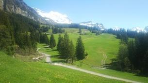 スイス ユングフラウ地方 ヴェンゲンアルプ~ウェンゲン 7の写真素材 [FYI02984213]