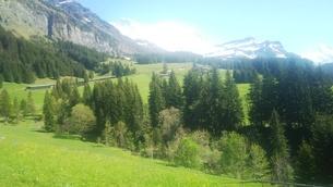 スイス ユングフラウ地方 ヴェンゲンアルプ~ウェンゲン 11 ハイキングコースの写真素材 [FYI02984217]