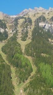 スイス ユングフラウ地方 ウェンゲン 6の写真素材 [FYI02984224]