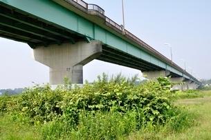 相模川に架かる橋 座架依橋の写真素材 [FYI02984467]
