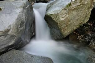 西丹沢 西沢の渓流の写真素材 [FYI02984474]