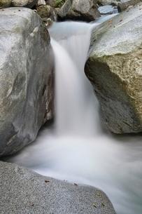 西丹沢 西沢の渓流の写真素材 [FYI02984477]