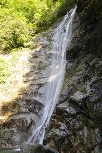 西丹沢 下棚の滝の写真素材 [FYI02984487]