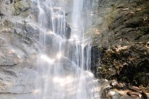 西丹沢 下棚の滝の写真素材 [FYI02984492]