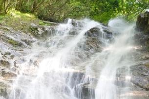 西丹沢 下棚の滝の写真素材 [FYI02984494]