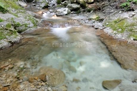 西丹沢 本棚沢の渓流の写真素材 [FYI02984522]