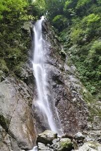 西丹沢 本棚の滝の写真素材 [FYI02984525]