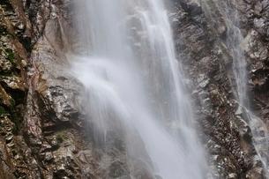 西丹沢 本棚の滝の写真素材 [FYI02984530]
