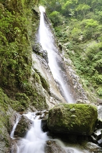西丹沢 本棚の滝の写真素材 [FYI02984538]