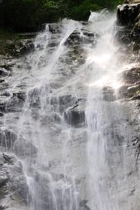 西丹沢 下棚の滝の写真素材 [FYI02984540]