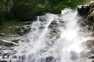 西丹沢 下棚の滝の写真素材 [FYI02984541]