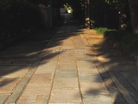夏の光と影の写真素材 [FYI02984567]