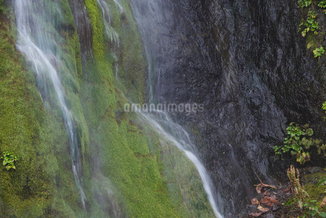 岩肌を流れる小さな滝の写真素材 [FYI02984574]