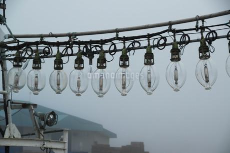 早朝の漁船の集魚灯の写真素材 [FYI02984576]