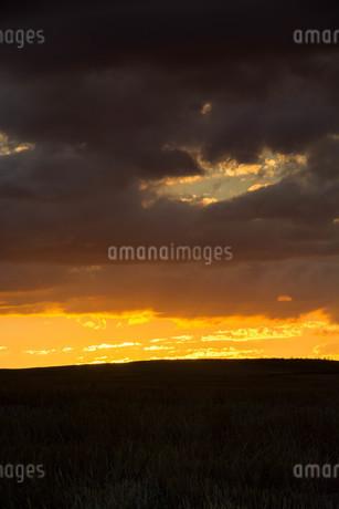 美しい夕焼け空と丘 美瑛町の写真素材 [FYI02984589]