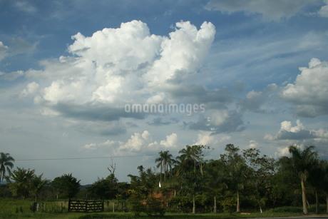 ブラジルの夏の青空と雲の写真素材 [FYI02984674]
