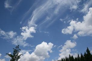 サンパウロの夏の青空と雲の写真素材 [FYI02984676]