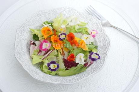 エディブルフラワーサラダの写真素材 [FYI02984830]